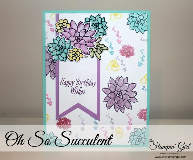 succulent-blog-1