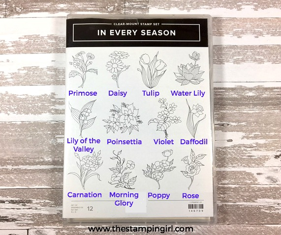 In Every Season Flower Names